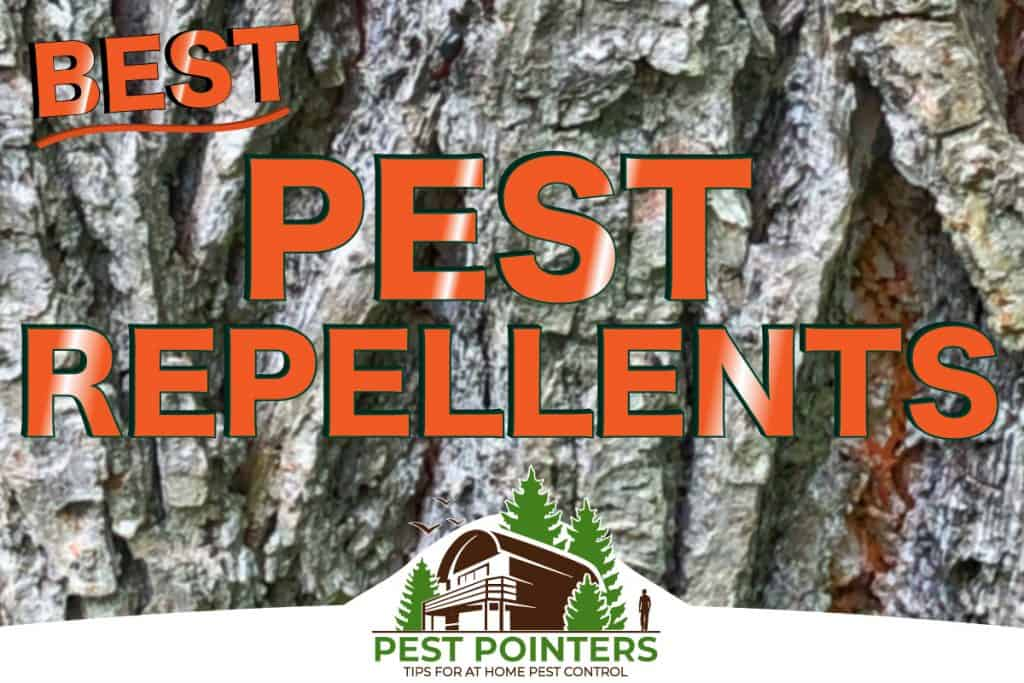 Best Pest and Wildlife Repellents for DIY Uses
