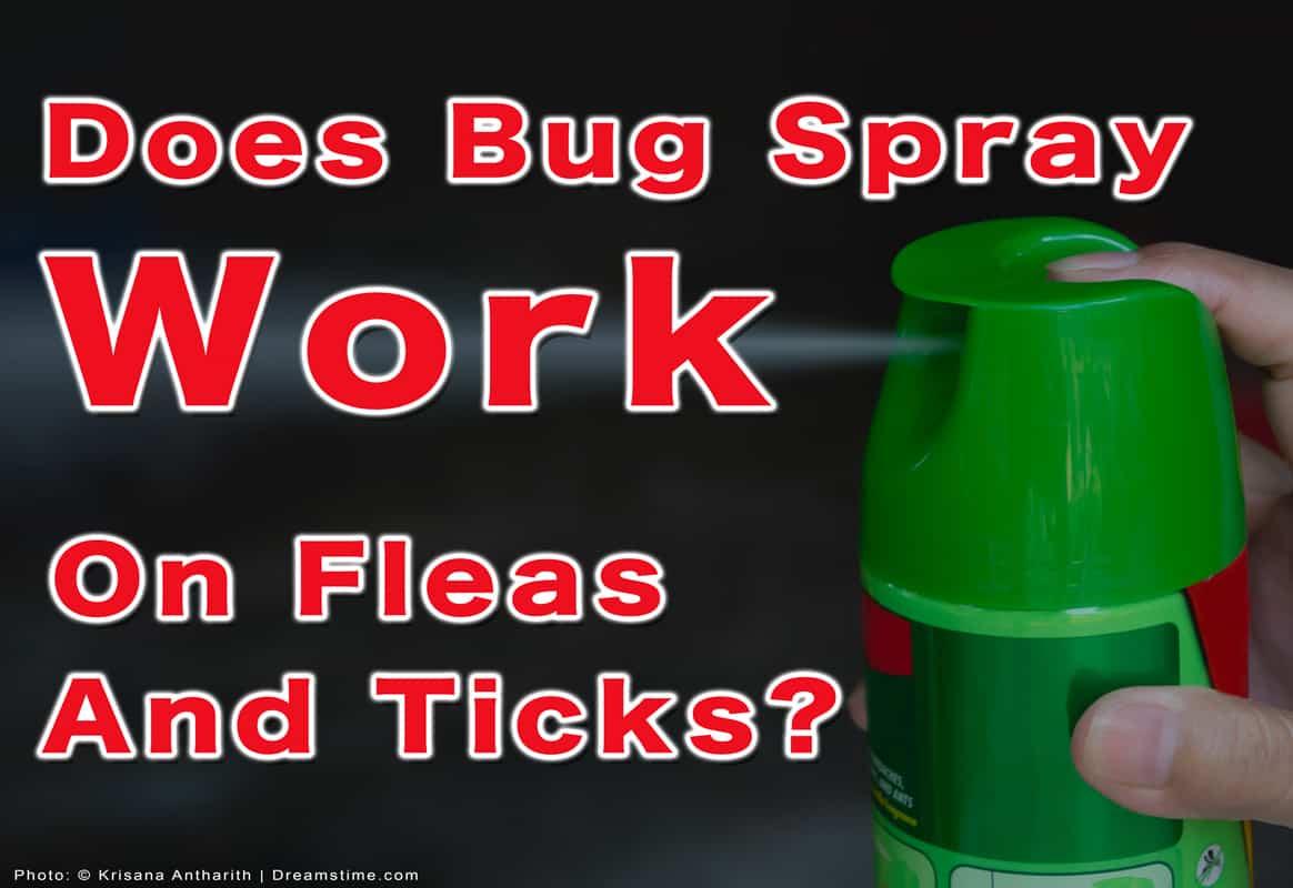 "Hand holding bug spray with text ""Does Bug Spray Work On Fleas and Ticks?"""
