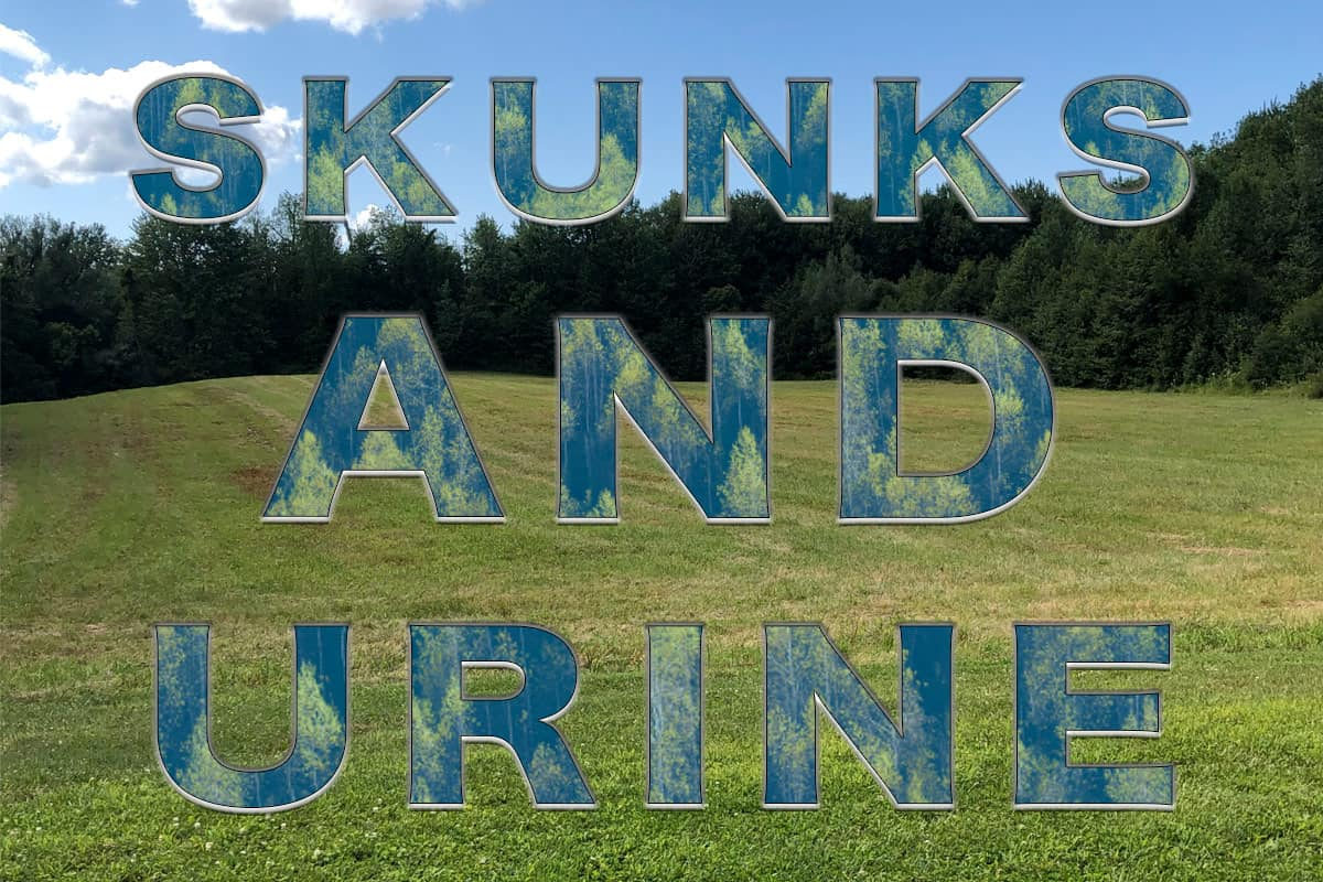 """Background of pasture with woodlands and text overtop """"Skunks And Urine"""""""